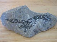 Eastern Screech Owl (Rock Art)